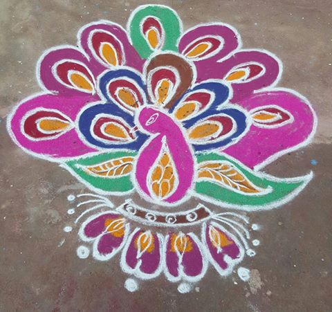 peacock, mayil kolam, colours, rangoli