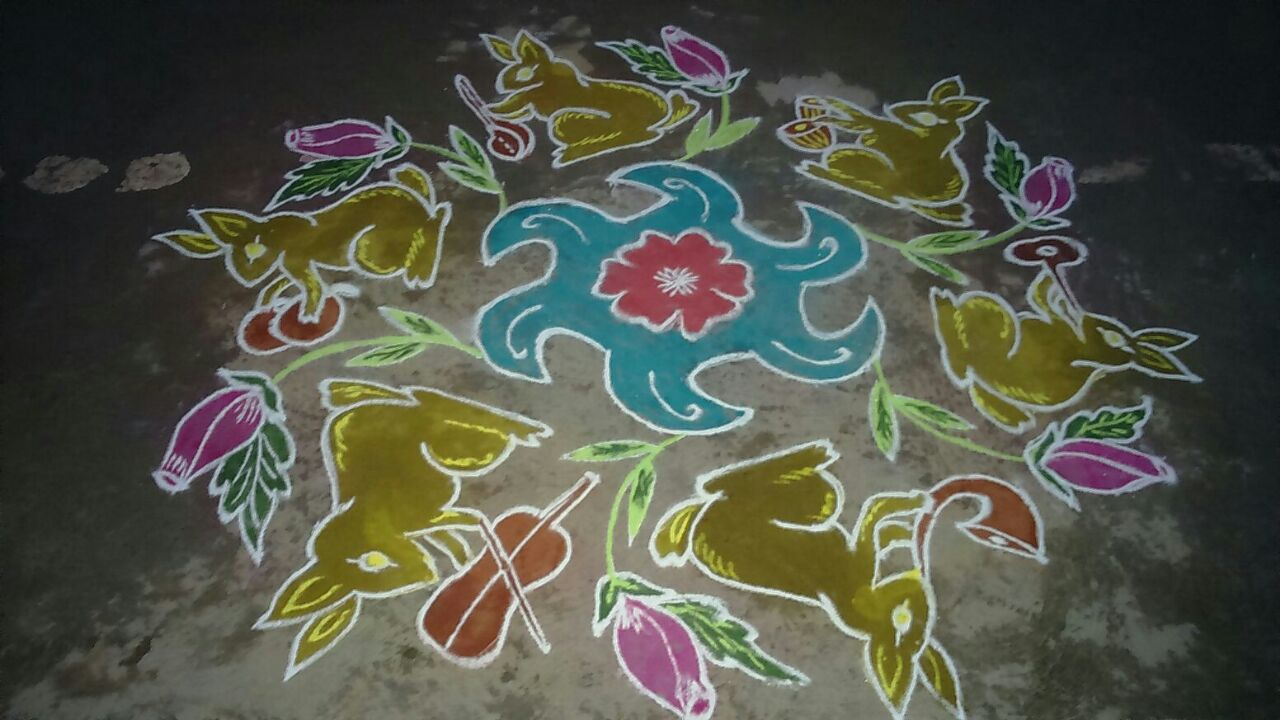 rabbit kolam