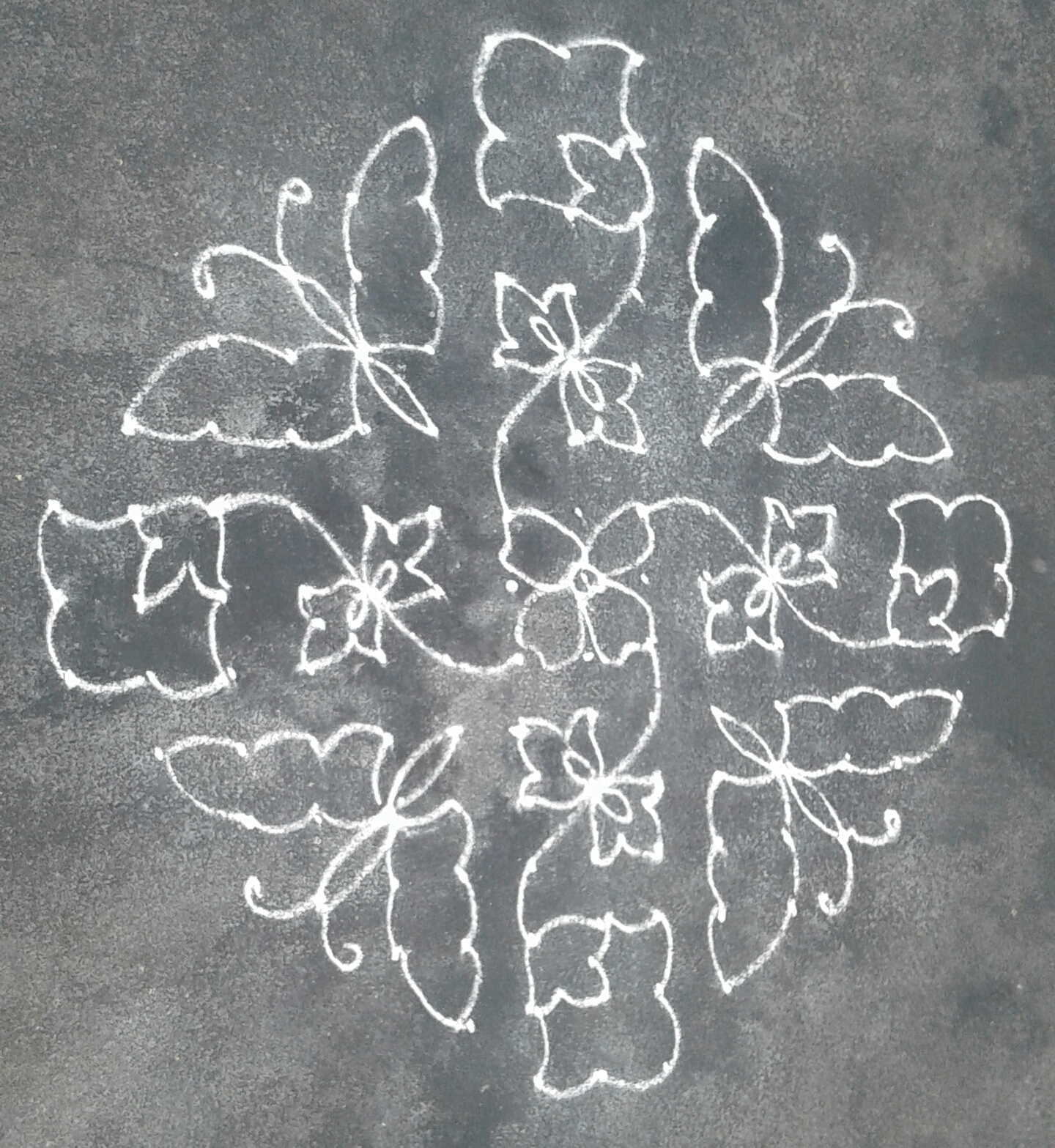15 dots flowers || Butterfly kolam for contest