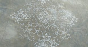 Flower kolam with 25 dots || Contest Kolam