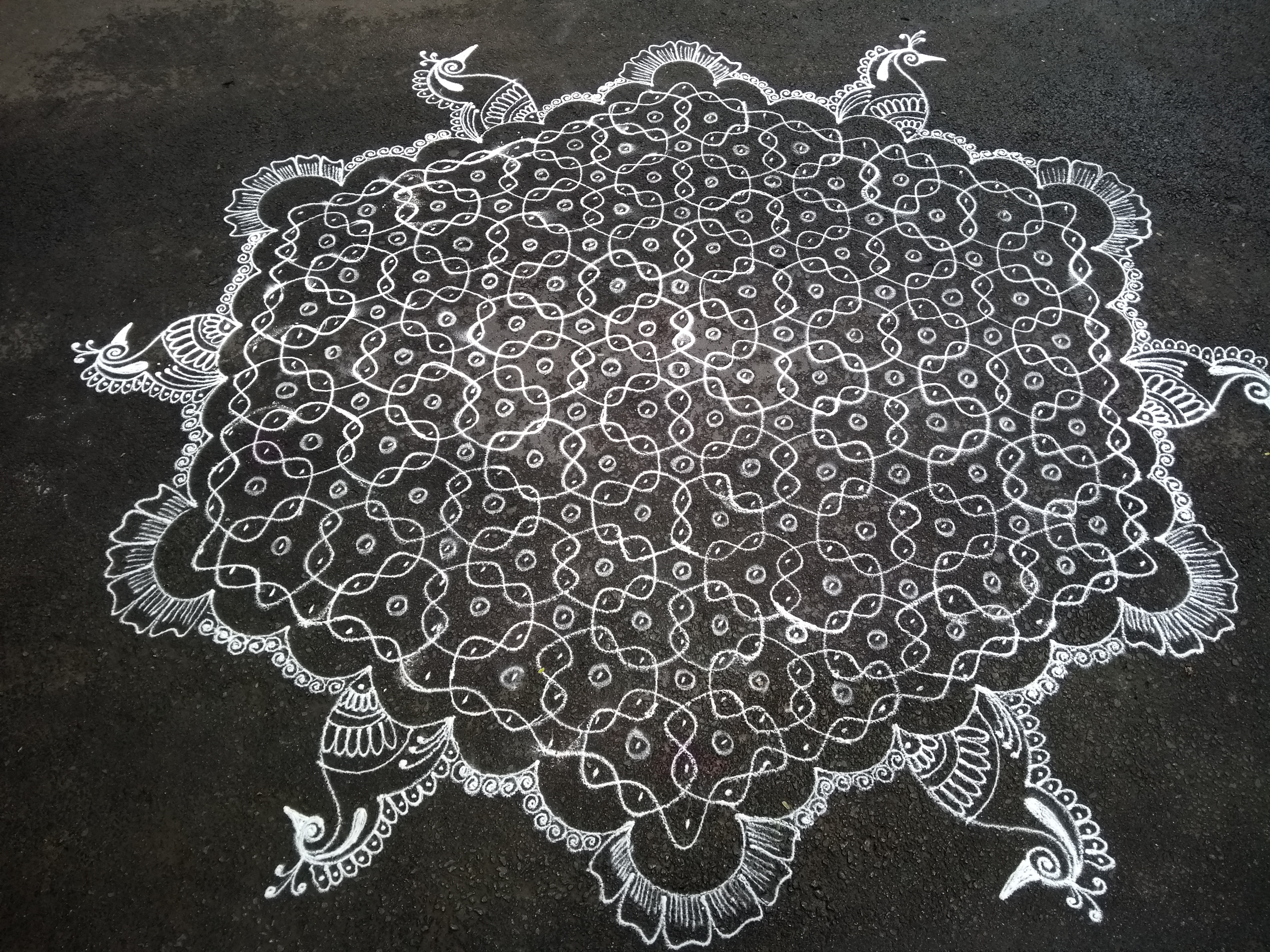 25 dots Sikku Kolam for Contest || 6 mughanukku 6 mayilvaaghanangal