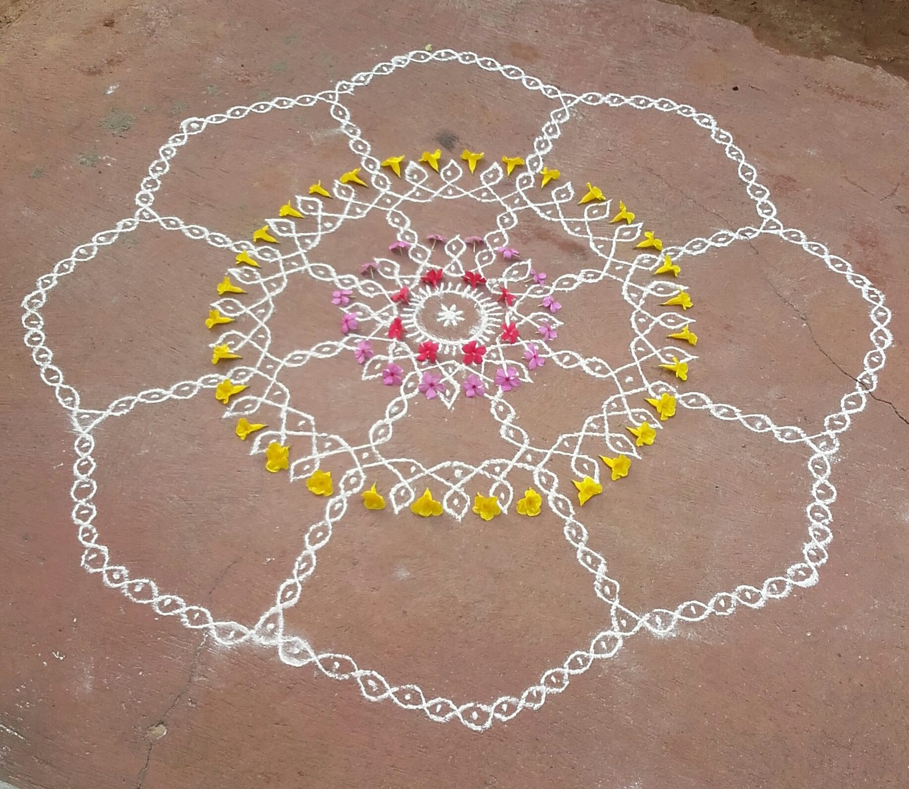 25 dots Flower Sikku Kolam for Contest || Ezhil kolams