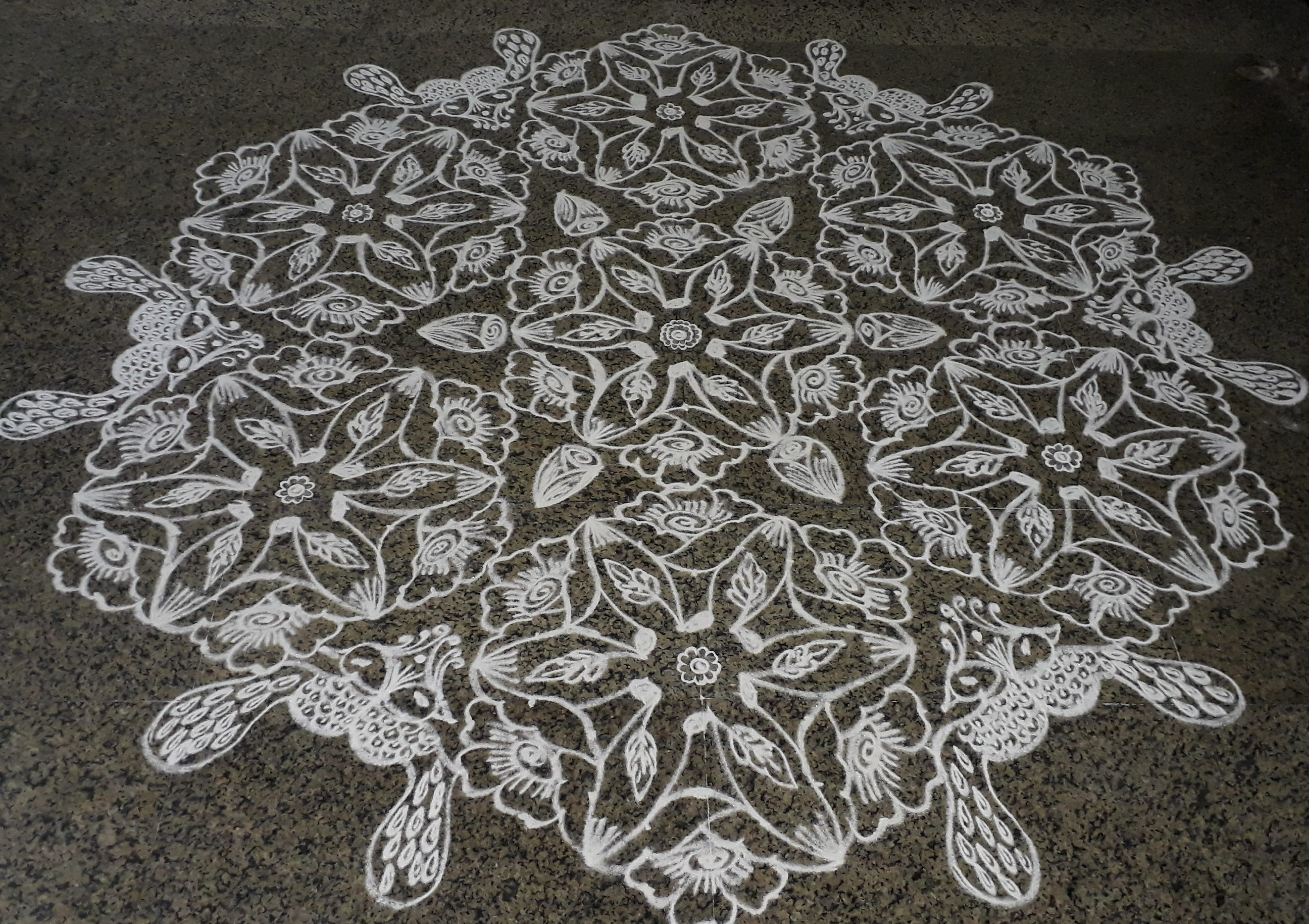 25-13 interlaced dots flowers and peacock kolam || Contest Kolam